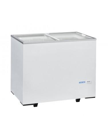 Frigorifero a pozzetto 300Lt -13/-23 °C